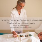 curso sintergetica medicina alternativa complementaria